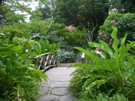 Barbados pictures Andromeda Gardens