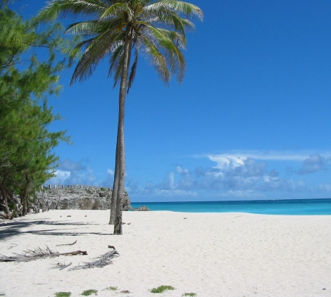 barbados weather forecastpack your sunscreen