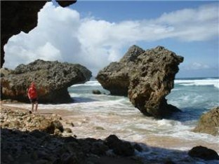Barbados shore excursions scene